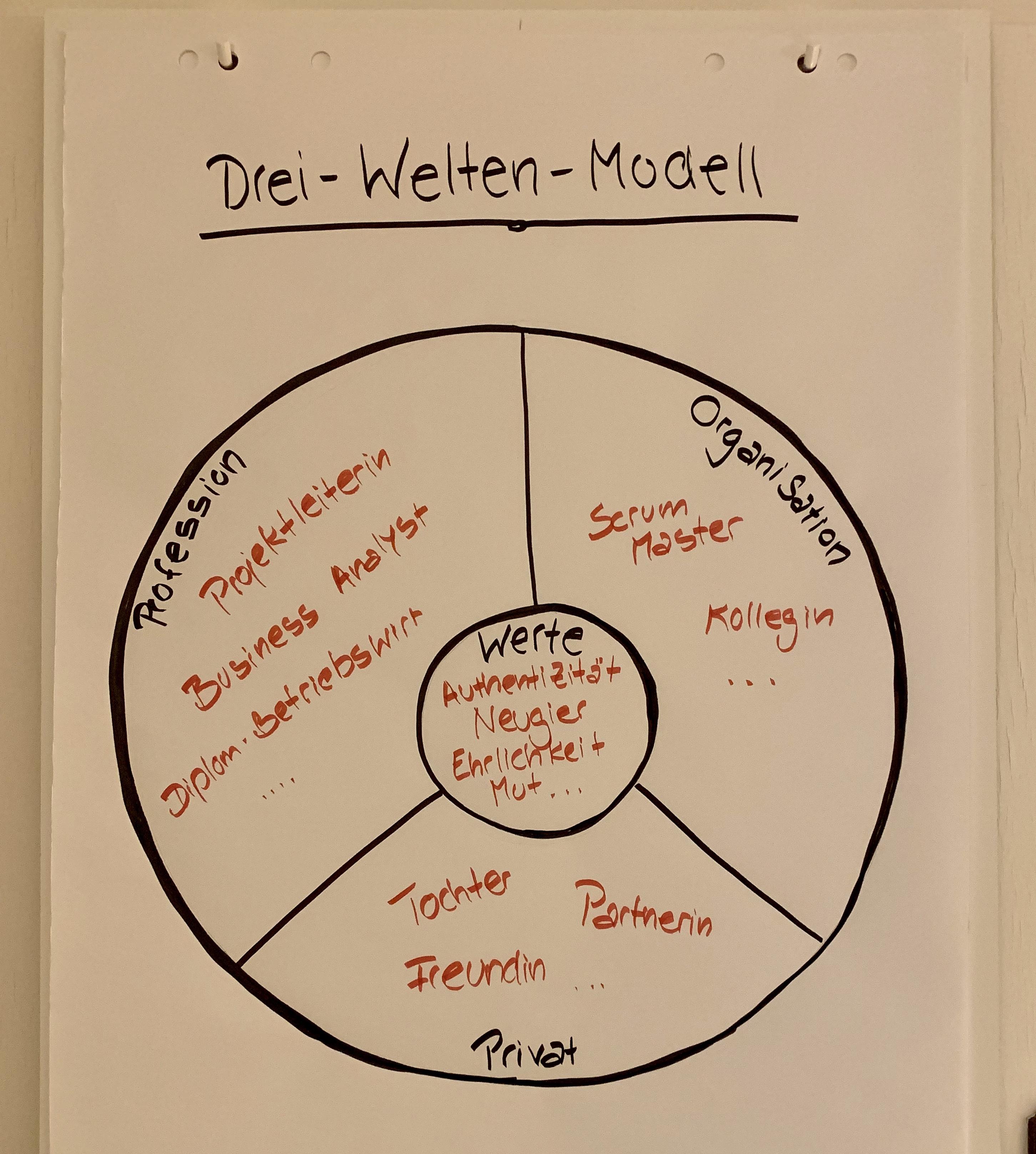 Drei-Welten-Modell (nach Bernd Schmid)